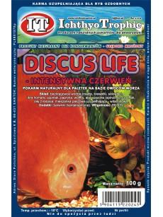 IchthyoTrophic Pokarm mrożony Discus Life Intensywna Czerwień 100g