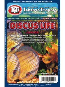 IchthyoTrophic Pokarm mrożony Discus Life Junior 100g