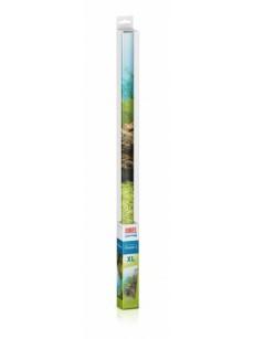 Juwel Tło akwariowe Poster 1 XL